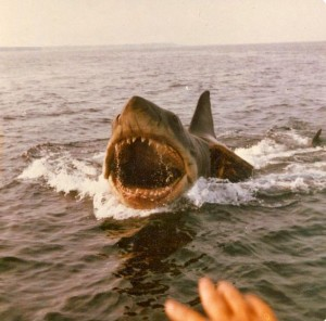 Jaws Behind the Scenes Pic