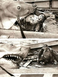 Jaws_Behind the Scenes Pic